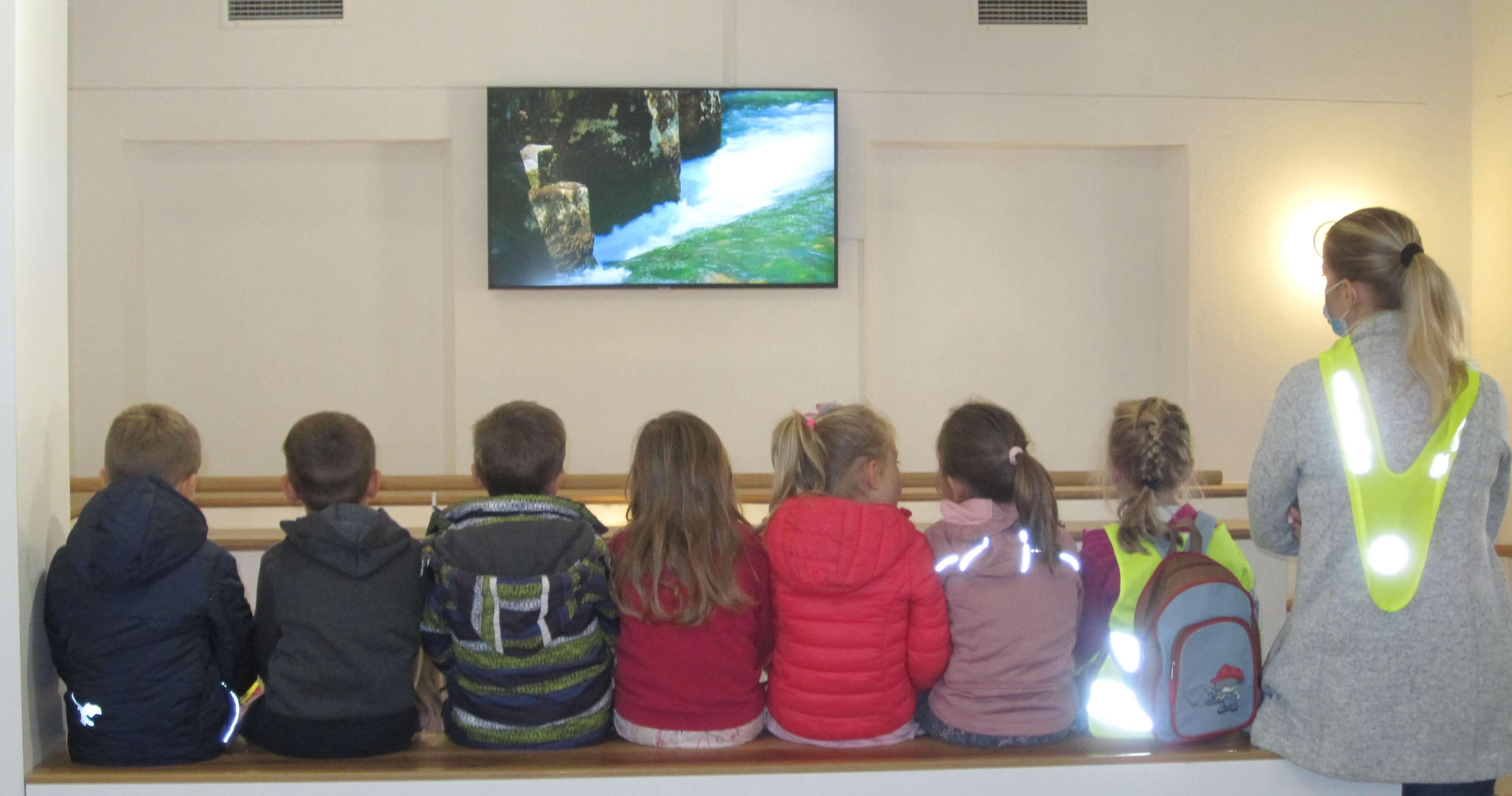 Dediščina v rokah najmlajših: Reka Krupa