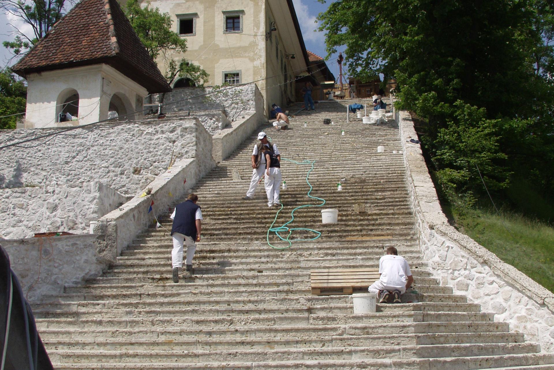 Bled, Bled Island