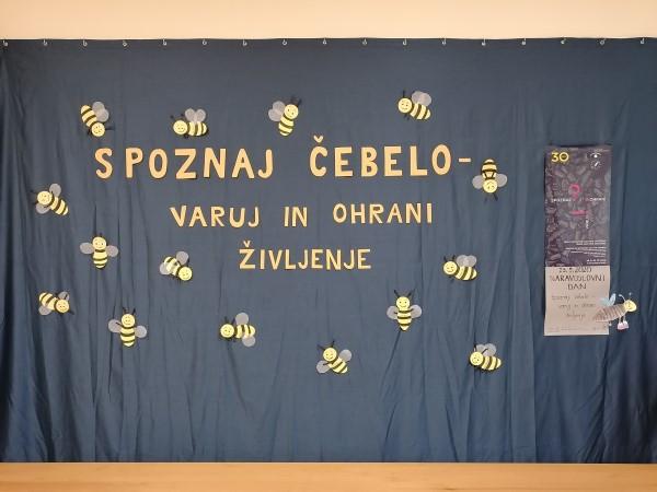 Spoznaj čebelo - varuj in ohrani življenje