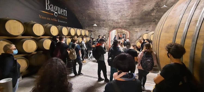 Skuhajmo zgodbo, ogled vinske kleti v brdih, foto arhiv Šolski center Nova Gorica